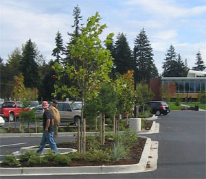 Peninsula College Parking Lot Sustainable Retrofit