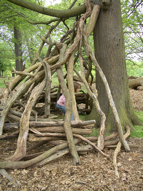 Den in Richmond Park, Photo by Tim Gill