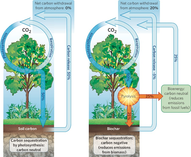 Biochar and carbon cycling, International Biochar Initiative